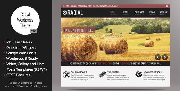 创新型博客和作品wordpress主题Radial v1.0.8