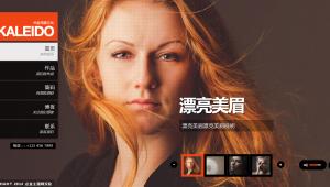 Wordpress精品摄影主题kaleido汉化版