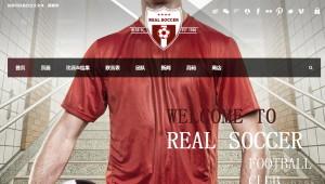 Real Soccer汉化版