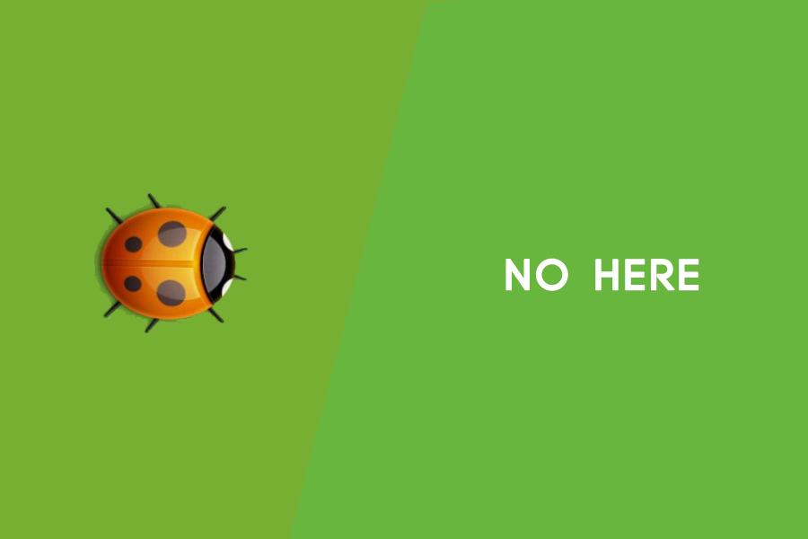 如何关闭WordPress PHP错误