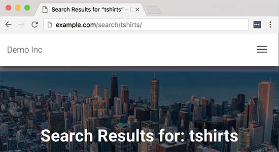 如何更改WordPress中的默认搜索URL别名