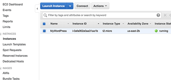 WordPress实例正在运行
