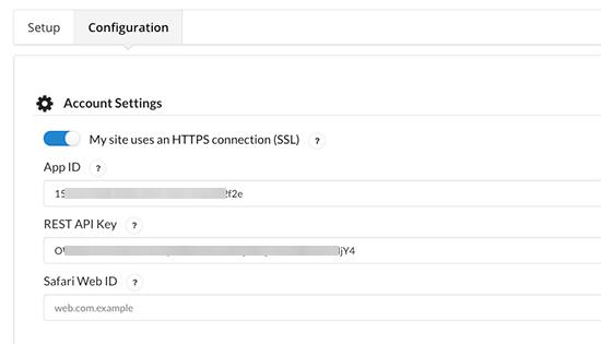 粘贴API密钥