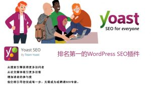 WordPress SEO 专业中文版