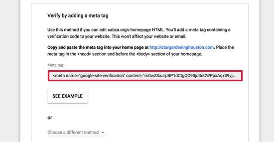 复制元标记以验证您对域名的所有权