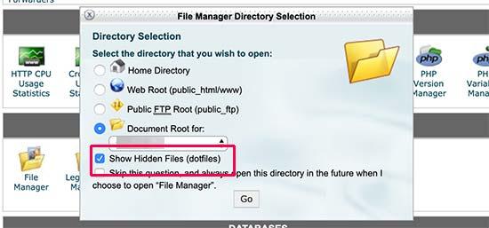在cPanel中显示隐藏文件