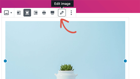 在默认的WordPress编辑器中编辑图像