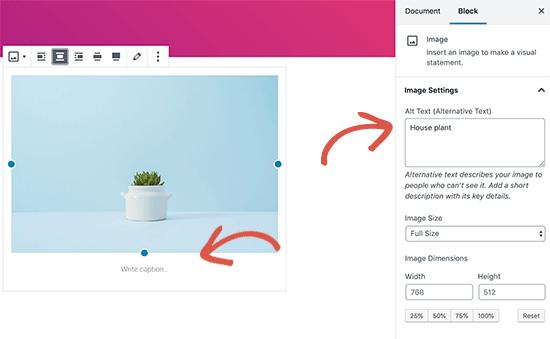 在WordPress中为图像添加alt文本和标题