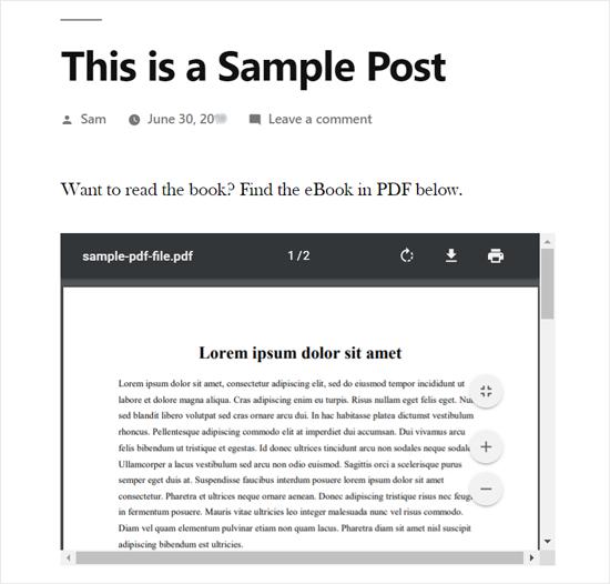 PDF嵌入在WordPress Post Preview中