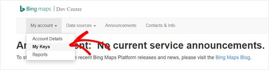 Bing Maps开发中心我的关键选项