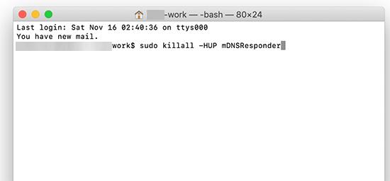 在macOS上使用终端清除DNS缓存