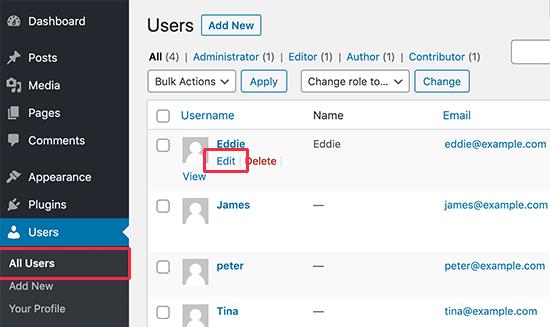 在WordPress中编辑用户详细信息