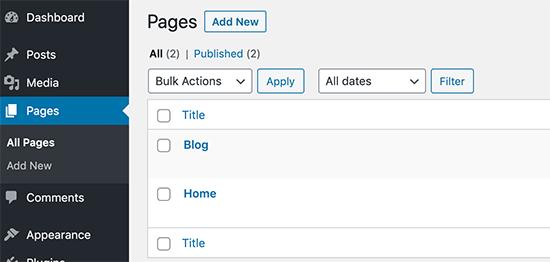 在WordPress中发布博客和主页