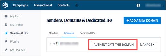 身份验证域按钮,可让您返回到DNS设置