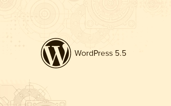 WordPress 5.5中的新功能(功能和屏幕截图)